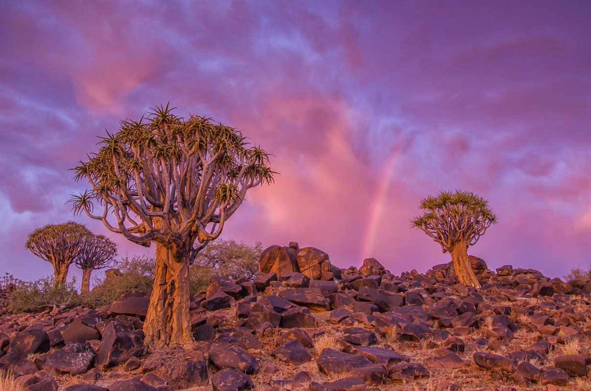 Penda-Nick-Emil-3 landscape photography