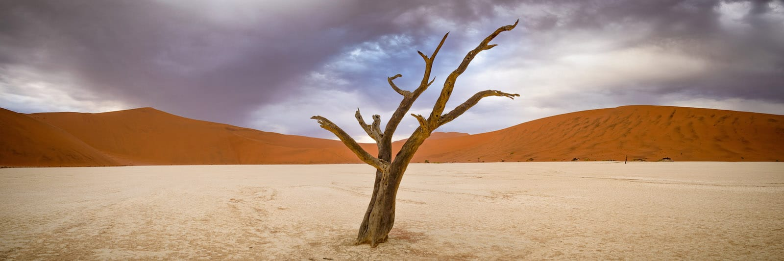 Capturing Space: Our Photography Workshop in Namibia