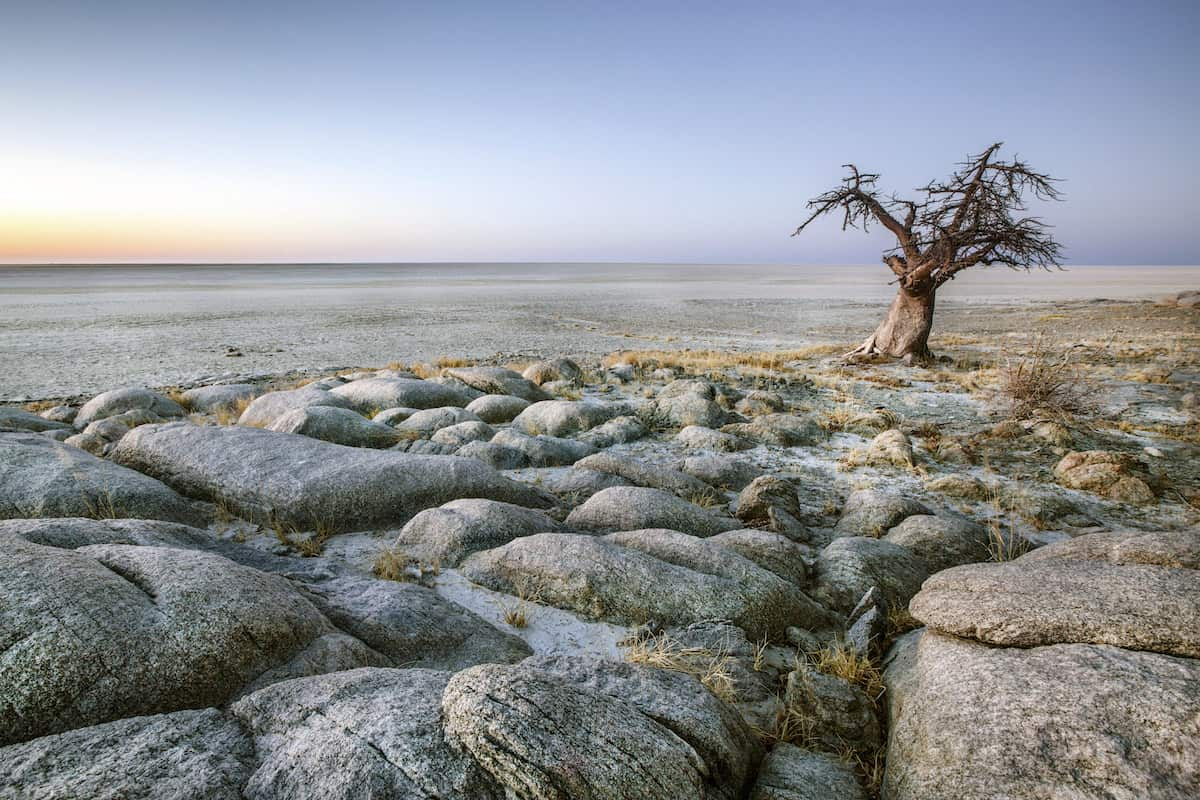 iStock 49899394 XLARGE copy - 10 Quick Facts About Botswana (that will make you want to go there)