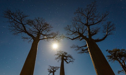 Madagascar Photography Tour - Landscape Photography Tours