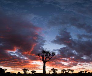Namibia Landscape Photography22
