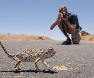 Namibia Landscape Photography23