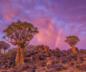 Namibia Landscape Photography7