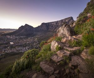 ngo-academic-summer-course-cape-town14