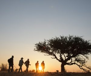 faculty-led program Africa