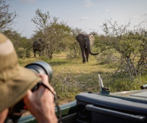 wildlife photography internship