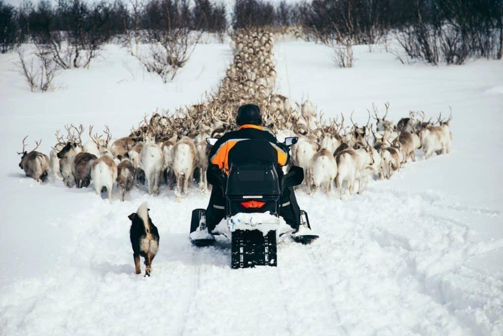 Sami trek Norway
